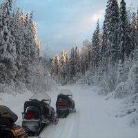 De 5 wintersportactiviteiten die je gedaan moet hebben in Canada!